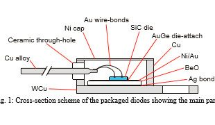 Cross-section scheme of the packaged diodes showing the main parts