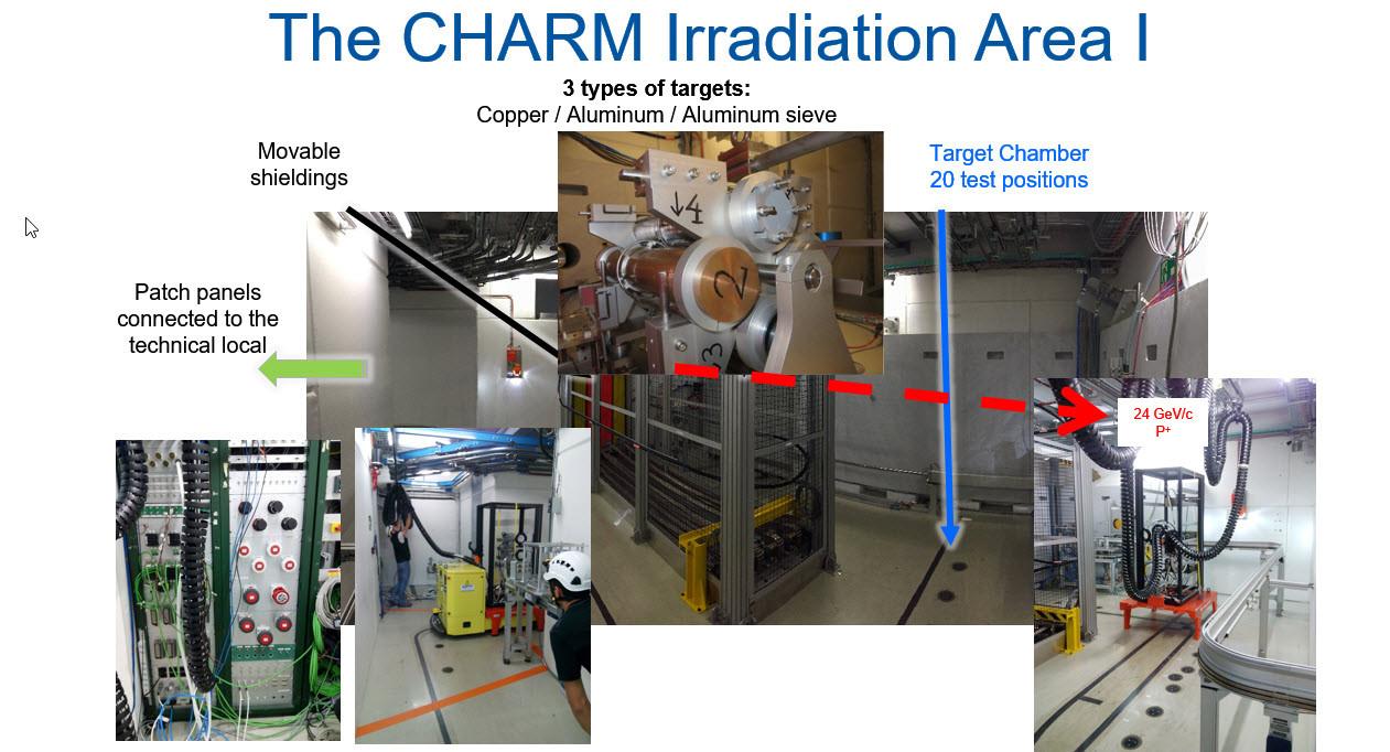 charm irradiation cern radiation test
